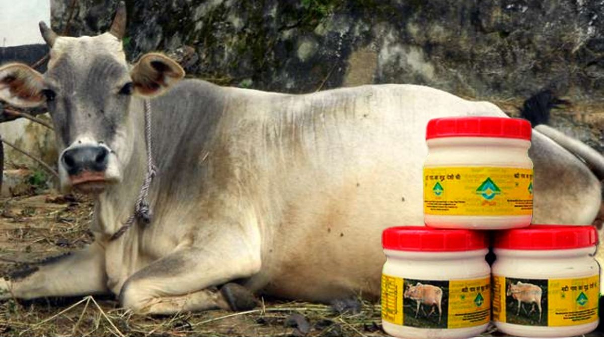 badree cow milk and ghee